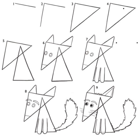 Steps for drawing a triange fox