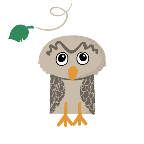 Shape owl