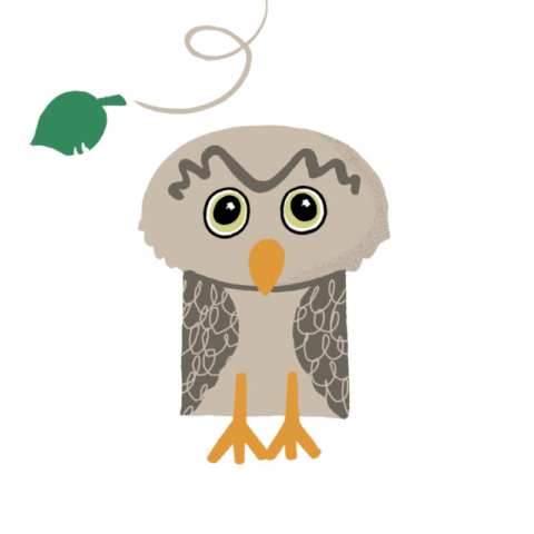 An owl character made from basic shapes